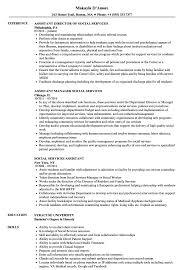 Social Services Assistant Resume Samples Velvet Jobs