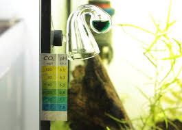 Guide For Using A Co2 Drop Checker In A Planted Tank