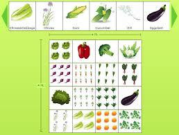 4 x 4 sample vegetable garden plan