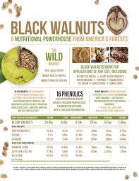 Food Manufacturing Hammons Black Walnuts