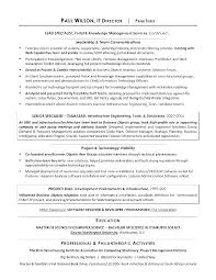 Executive Director Resume Sample It Director Resume Examples