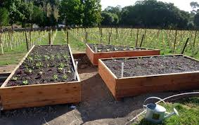 Small Picture Building A Raised Vegetable Garden DIY Building a Raised