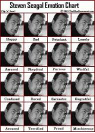 Steven Seagal Emotion Chart Poster New Emotion Chart Memes Kristen Stewart Memes Expression