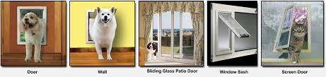 how to install a doggie door