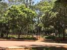 imagem de Sabino São Paulo n-14