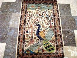 image of peacock rug frontgate