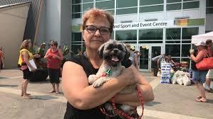 I just wanted my dog': Cache Creek, B.C., evacuee flees home amid ...