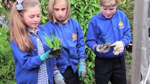 The Stephanie Alexander Kitchen Garden National Program Join The Kitchen Garden Classroom Youtube