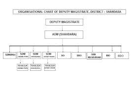 Organisation Chart District Shahdara Government Of Delhi