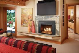 fireplace pellet burning inserts