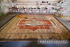 pet system washing antique persian qom oriental rug 40 years