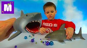 <b>Акула</b> растущая в воде и игрушечная <b>акула</b> Челюсти ...