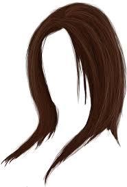 Image result for hair transparent
