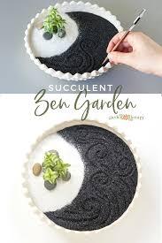 mini succulent zen garden
