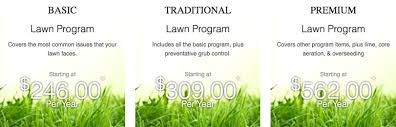 comparing trugreen allentown pa with local lawn care services