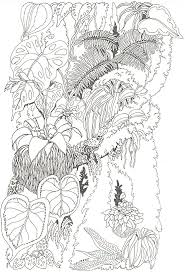 Small Picture Forest Woods Coloring Page Trunk Coloring Page Regenwetter