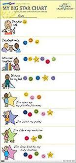 My Big Star Chart My Big Star Reward Chart 2yrsplus Award Winning Great