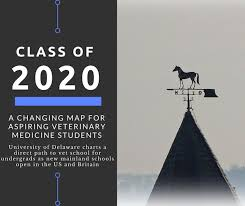 when the graduation ceremonies are over that year the potential exists for the largest pool of graduating veterinarians in history this year new vet