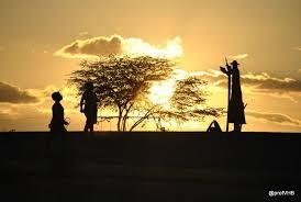 Resultado de imagem para dia inter dos voluntários para o desenvolvimento econômico e social