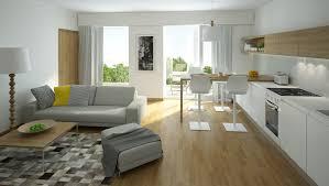 Kitchen Living Room Living Room Modern Living Room Design Ideas Combine Nice Kitchen