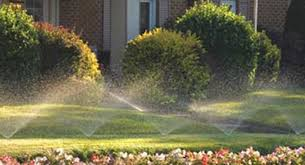lawn service okc. Perfect Service Make Maintaining Your Lawn Easy And Affordable With Lawn Service Okc X