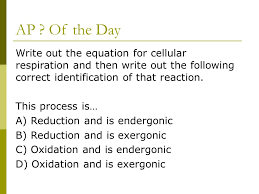 cellular respiration equation quizlet jennarocca