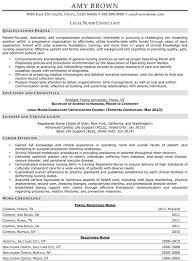 Medical Resume Examples Resume Professional Writers