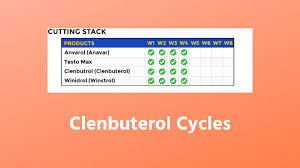 Eca Stack Dosage Chart Clenbuterol Cycles An Ultimate Guide For All Level Users