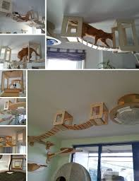 Diy cat playhouse Kittens Diy Cozy Home The Ultimate Indoor Kitty Playground
