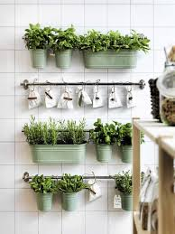 herb garden kitchen wall decor voguish