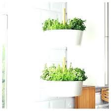 kitchen herb planter medium size of wall garden indoor terrarium