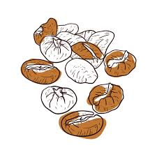 coffee bean vector png. Wonderful Png Hand Drawn Coffee Beans Transparent PNG Throughout Coffee Bean Vector Png C