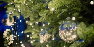 Holiday Brilliant Christmas Lights 8 Brilliant Uses For Fallen Pine Needles Hanging Christmas