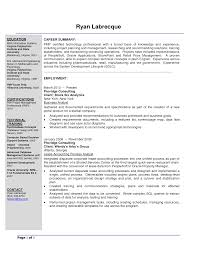 Business Analyst Resume Templates Sample Sevte