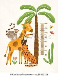 Childrens Height Wall Chart In Centimeters Decorated With Tropical Palm Tree Jungle Plants And Funny Cartoon Exotic Animals Colorful Vector