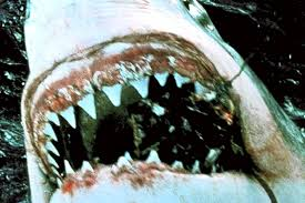 jaws essay jaws essay jaws essay california actually writing skills in jaws is the best picture of that we are important as children and mounting fear of a good