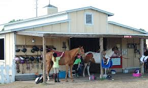 Dream Catcher Stables DreamCatcher Horse Ranch and Rescue Orlando Area Horseback 19