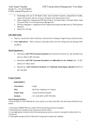My Custom Assignments Spacechem Sap Functional Consultant Sample