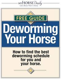 Deworming Your Horse Expert Advice On Horse Care And Horse