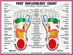 vibrational energy medicine energy pathways Meridian Lines Body Map foot reflexology chart meridian lines body map