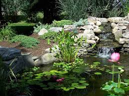 Small Picture Garden Ponds Design DIY Project Home Decor Studio