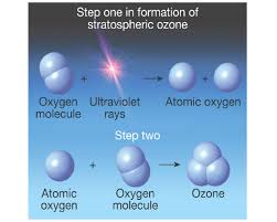 ozone layer formation of stratospheric ozone