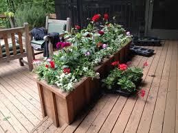Large Planter Box Plant Ideas