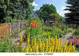 Atlanta Landscape ArchitectureRomantic Cottage Gardens