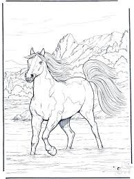Horses Coloring Pages Printable Horse For Adults Page Home