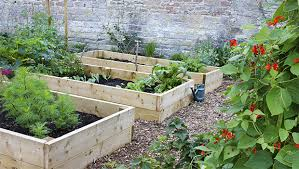 how to start a small garden. How To Start A Sustainable Home Garden Small N