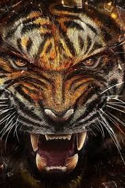 tiger iphone 6 wallpaper. Delighful Iphone Tiger Fangs IPhone 6 Wallpaper  And Iphone F