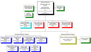 About Nhlbi Organizational Chart