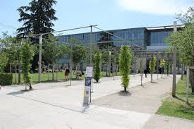 Università di Avignone