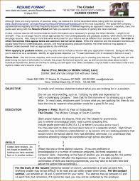 Job Hopper Resume Magnificent Job Hopper Resume Template Photos Entry Level Resume 1